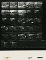 Ford B1083 NLGRF photo contact sheet (1976-08-16)(Gerald Ford Library).jpg