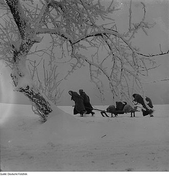 Winter of 1946–47 in the United Kingdom - Women in Germany collecting fuel in 1946
