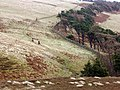 Four Lords Lands - geograph.org.uk - 4815.jpg
