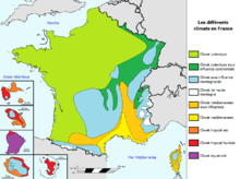 Francia Wikipedia