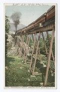 Frankenstein Trestle, Crawford Notch, New Hampshire (NYPL b12647398-73795).tiff