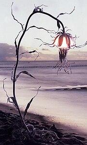 Fuhrmann-Lampe4.jpg