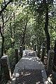 Futian, Shenzhen, Guangdong, China - panoramio (9).jpg
