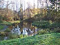 Gala Policies (the pond) - panoramio.jpg