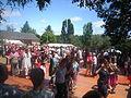 Gallésie en fête 2013 à Monterfil 2.JPG