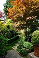 Garden (5973803240).jpg