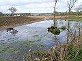 Genoch Mains - geograph.org.uk - 163831.jpg