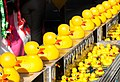Get your ducks in a row (10662351906).jpg