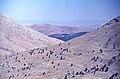 Gezbeli-Pass 08 09 1983 Tahtalı Dağları lichter Wacholderwald 2.jpg