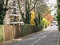 Gipsy Lane, Putney - geograph.org.uk - 1561466.jpg