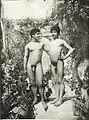 Gloeden, Wilhelm von (1856-1931) - n. 0691 - ebay.jpg