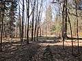 Gmina Narol, Poland - panoramio (12).jpg