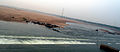 Godavari flowing at Dowleswaram barrage.JPG