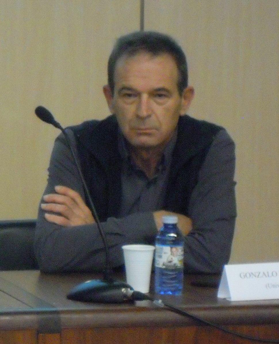Gonzalo Navaza Blanco
