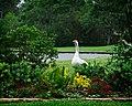 Goose in a Garden (5586976786).jpg