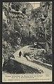 Gorges d'omblèze - La route dans les gorges. Pont de la Grande Pissoire (33727260814).jpg