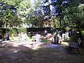 Gräberfeld auf dem neuen jüdischen Friedhof in Cottbus.JPG