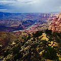 Grand Canyon National Park view.jpg