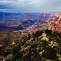Grand Canyon National Park view.jpg