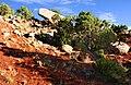 Grand Junction, Colorado (4847110047).jpg