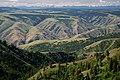 Grande Ronde River, Umatilla National Forest (34150047760).jpg