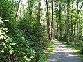 Graver Arboretum - 341.jpg
