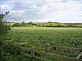 Greensand Ridge, Houghton Conquest, Beds - geograph.org.uk - 180215.jpg
