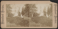 Greenwood Cemetery, from Robert N. Dennis collection of stereoscopic views 4.png