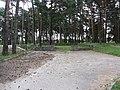 Grigiškės, Lithuania - panoramio (87).jpg