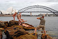 Group of naked women and photographer - Naked Sydney in 2005.jpg