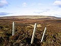 Grouse moorland - geograph.org.uk - 616110.jpg