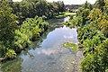 Guadalupe river new braunfels south.jpg