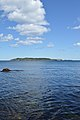 Gull Island viewed from Ragged Cove - Witless Bay, Newfoundland 2019-08-12.jpg