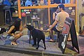 HK 中環 Central 蘇豪美食區 Soho night 伊利近街 Elgin Street August 2019 IX2 09.jpg