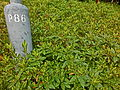 HK Wong Tai Sin 摩士公園 Morse Park No3 Number P86 sign plants May-2013.JPG