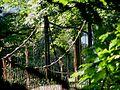 HSK-016 Alte Hängebrücke im Ruhrtal bei Laer.jpg