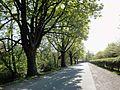 Hamm-Heessen, Hamm, Germany - panoramio (44).jpg