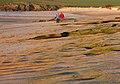 Harlyn Bay stroll - geograph.org.uk - 1285568.jpg