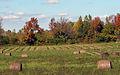 Hayfield in fall.jpg
