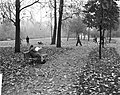 Herfststemming in Amsterdam, Bestanddeelnr 913-1150.jpg