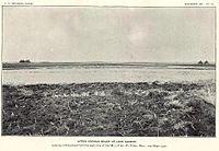 Herman Beach plate06.JPG