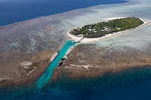 Great Barrier Reef - Heron Island, a coral cay in the southern Great Barrier Reef
