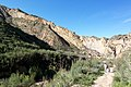 Hiking Towsley Canyon (2323969073).jpg