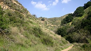 California coastal sage and chaparral Mediterranean forests, woodlands, and scrub ecoregion in Mexico and the United States