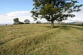 Hill fort - geograph.org.uk - 41397.jpg