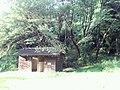 Hizumi, Yanai, Yamaguchi Prefecture 742-0111, Japan - panoramio (2).jpg