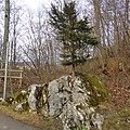 Hohenschwangau - panoramio (8).jpg
