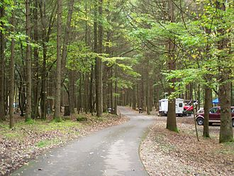 Holly River State Park - Spruce Area of campground