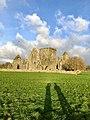 Hore Abbey, Caiseal, Éire - 32711589178.jpg