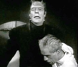 House of Frankenstein (Strange and Karloff).jpg